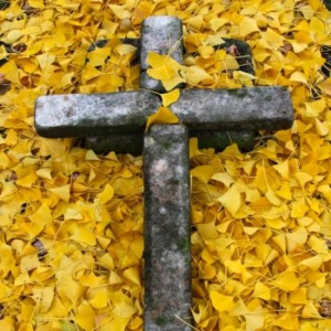 TP Stone Cross Surrounded by Ginkgo Leaves