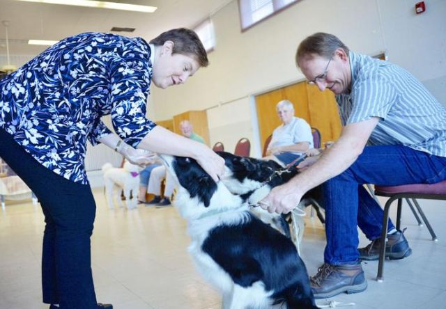 Herald Mail features St. Mark's, Lappans pet blessing service